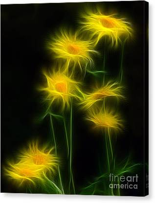 Yellow Daisy Floral  Canvas Print by Marjorie Imbeau