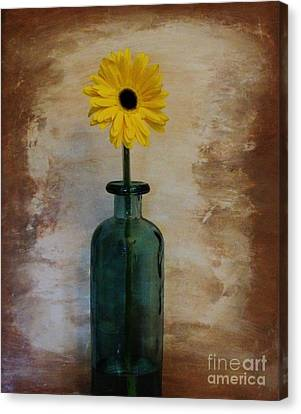 Yellow Daisy In A Bottle Canvas Print