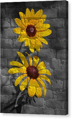 Yellow Flower Grafitti Canvas Print by Eric Liller