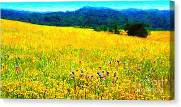 Yellow Hills . Long Cut Canvas Print by Wingsdomain Art and Photography