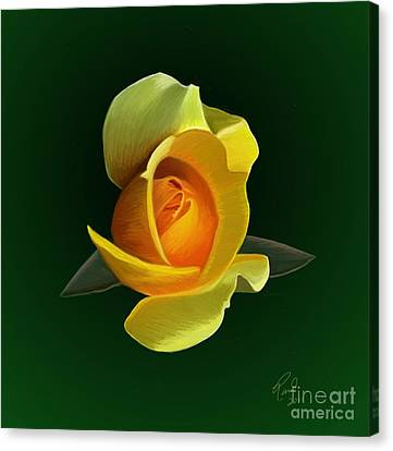 Yellow Rose Canvas Print by Rand Herron