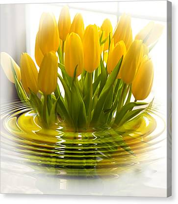 Yellow Tulips Canvas Print by Trudy Wilkerson