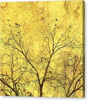 Yellow Wall Canvas Print by Skip Nall