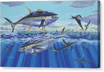 Yellowfin Bust Canvas Print by Carey Chen