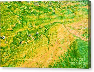Yellowstone Abstract 1 Canvas Print by Bob and Nancy Kendrick