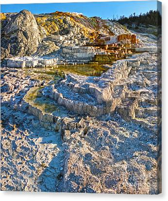 Yellowstone National Park - Mammoth Hot Springs - 02 Canvas Print by Gregory Dyer