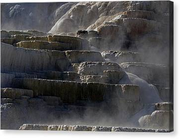 Canvas Print featuring the photograph Yellowstone Texture by J L Woody Wooden