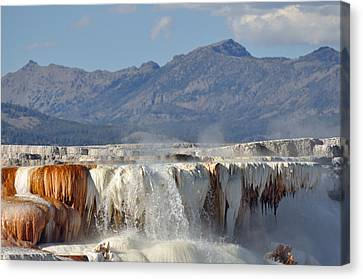 Yellowstone's Canary Springs 002 Canvas Print by Bruce Gourley