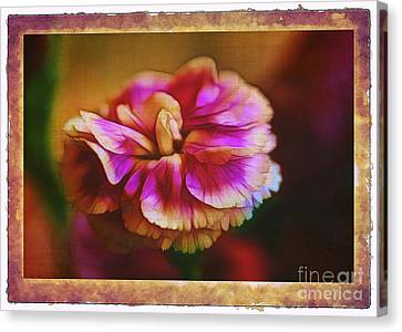 Yesterday Canvas Print by Judi Bagwell