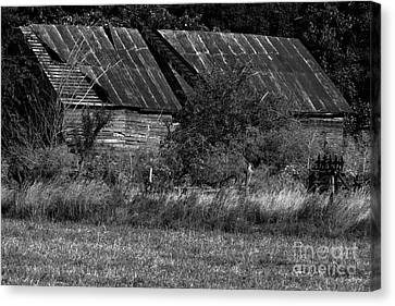 Yesterday's Barn Canvas Print by Alan Look