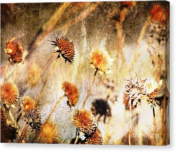 Yesterday's Flowers Canvas Print