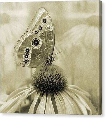 Yesterday's Visitor Canvas Print by Melisa Meyers