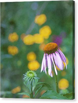 Canvas Print featuring the photograph Yet Another Flower by John Crothers