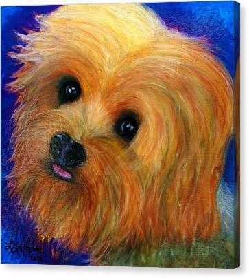 Yorkie Canvas Print by Laura  Grisham