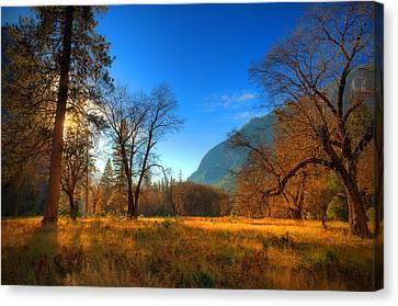Yosemite National Park Canvas Print by Eyal Nahmias