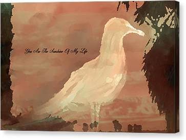 You Are The Sunshine Of My Life Canvas Print by Sherri  Of Palm Springs