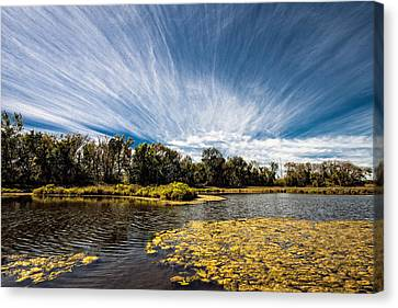 Canvas Print featuring the photograph You Cannot Be Cirrus by Tom Gort