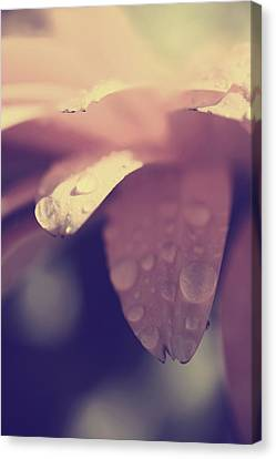 You Left Me Crying Canvas Print by Laurie Search