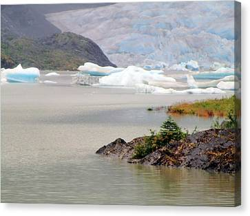 You Won't Believe Mendenhall Glacier Canvas Print by Mindy Newman