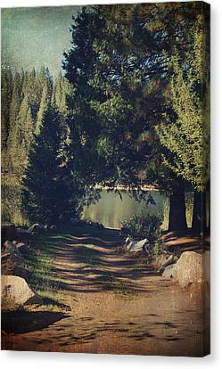White Pines Canvas Print - You'll Never Understand by Laurie Search