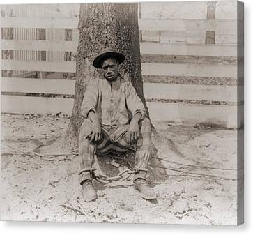 Young African American Sitting Canvas Print by Everett