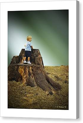 Young Boy Canvas Print by Brian Wallace