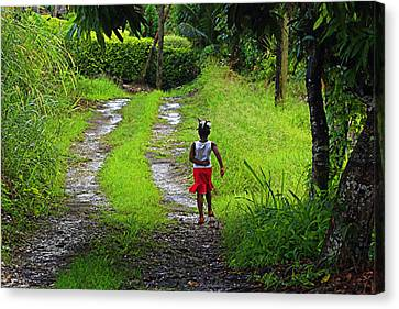 Canvas Print featuring the photograph Young Girl- St Lucia by Chester Williams