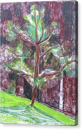 Canvas Print featuring the painting Young Pine Tree by Anita Dale Livaditis
