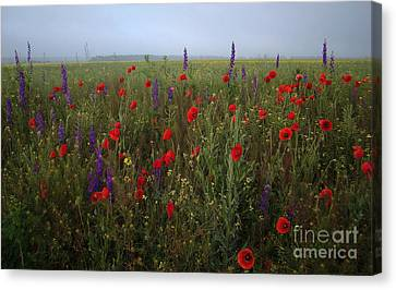 Young Princes Of The Field Canvas Print