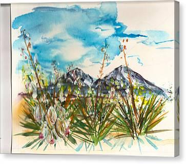Yucca And Huajatolla Peaks Canvas Print