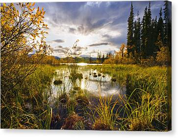 Yukon River And Fall Colours At Sunset Canvas Print by Yves Marcoux