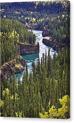 Yukon Territory, Canada Canvas Print by Richard Wear
