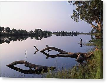 Zambesi River Canvas Print by Axiom Photographic