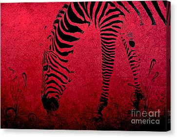 Zebra On Red Canvas Print by Aimelle