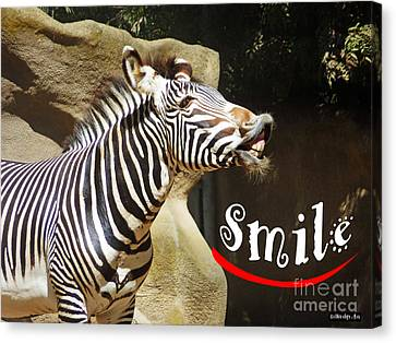 Zebra Smile Canvas Print by Methune Hively
