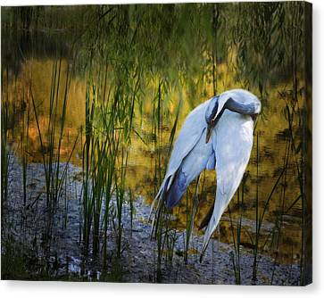 Zen Pond Canvas Print by Melinda Hughes-Berland