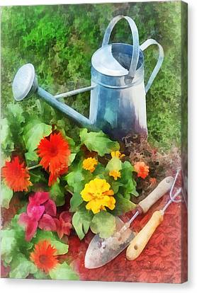 Zinnias And Watering Can Canvas Print by Susan Savad