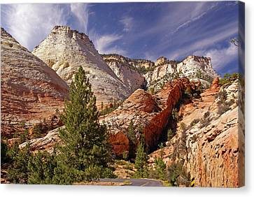 Canvas Print featuring the photograph Zion Np by Rod Jones