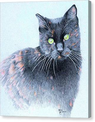 Zoe  Neighborhood Character Canvas Print by Ann Hamilton