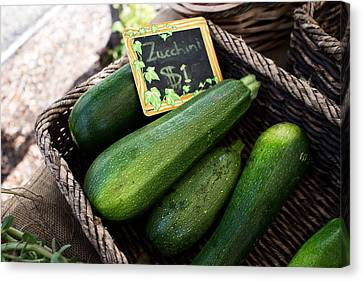 Zucchini Canvas Print by Tanya Harrison