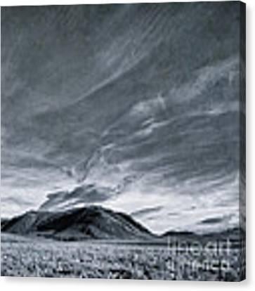 Land Shapes 19 Canvas Print