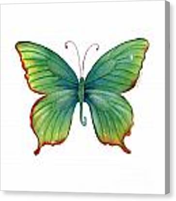 74 Green Flame Tip Butterfly Canvas Print