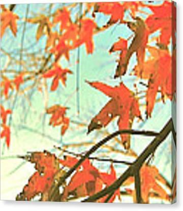 Autumn Dance Canvas Print by HweeYen Ong