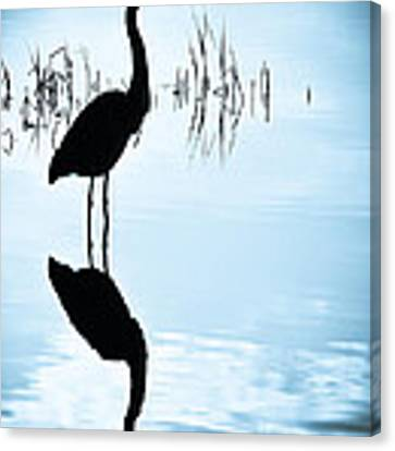 Blue Herons Canvas Print by Francis Trudeau