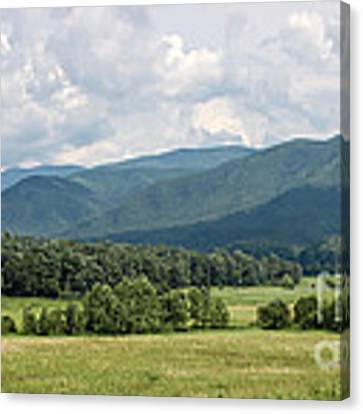 Cades Cove In Summer Canvas Print by Todd Blanchard