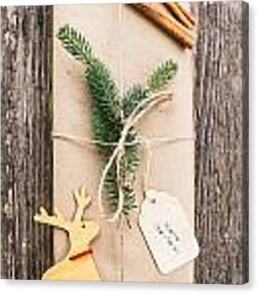Christmas Present Canvas Print by Viktor Pravdica