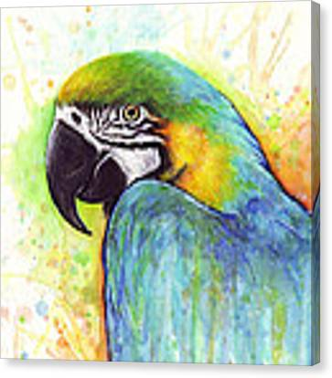 Macaw Watercolor Canvas Print by Olga Shvartsur