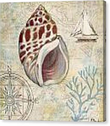 Discovery Shell Iv Canvas Print