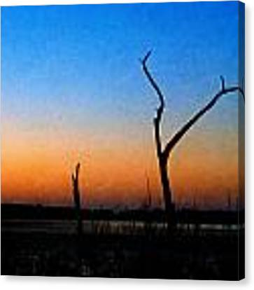 Evening Glow Canvas Print by Beverly Stapleton