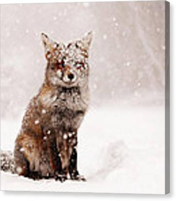 Fairytale Fox _ Red Fox In A Snow Storm Canvas Print